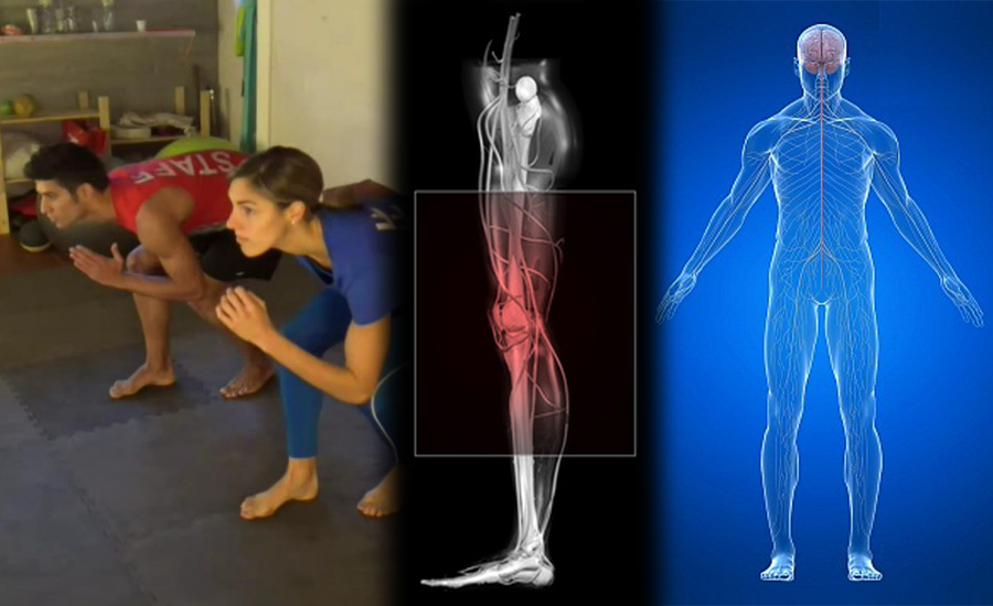 Leg cross flexion extension rehabilitation