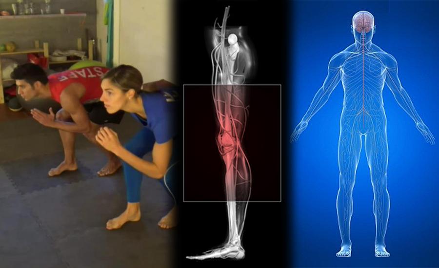 Leg cross flexion extension rehabilitation