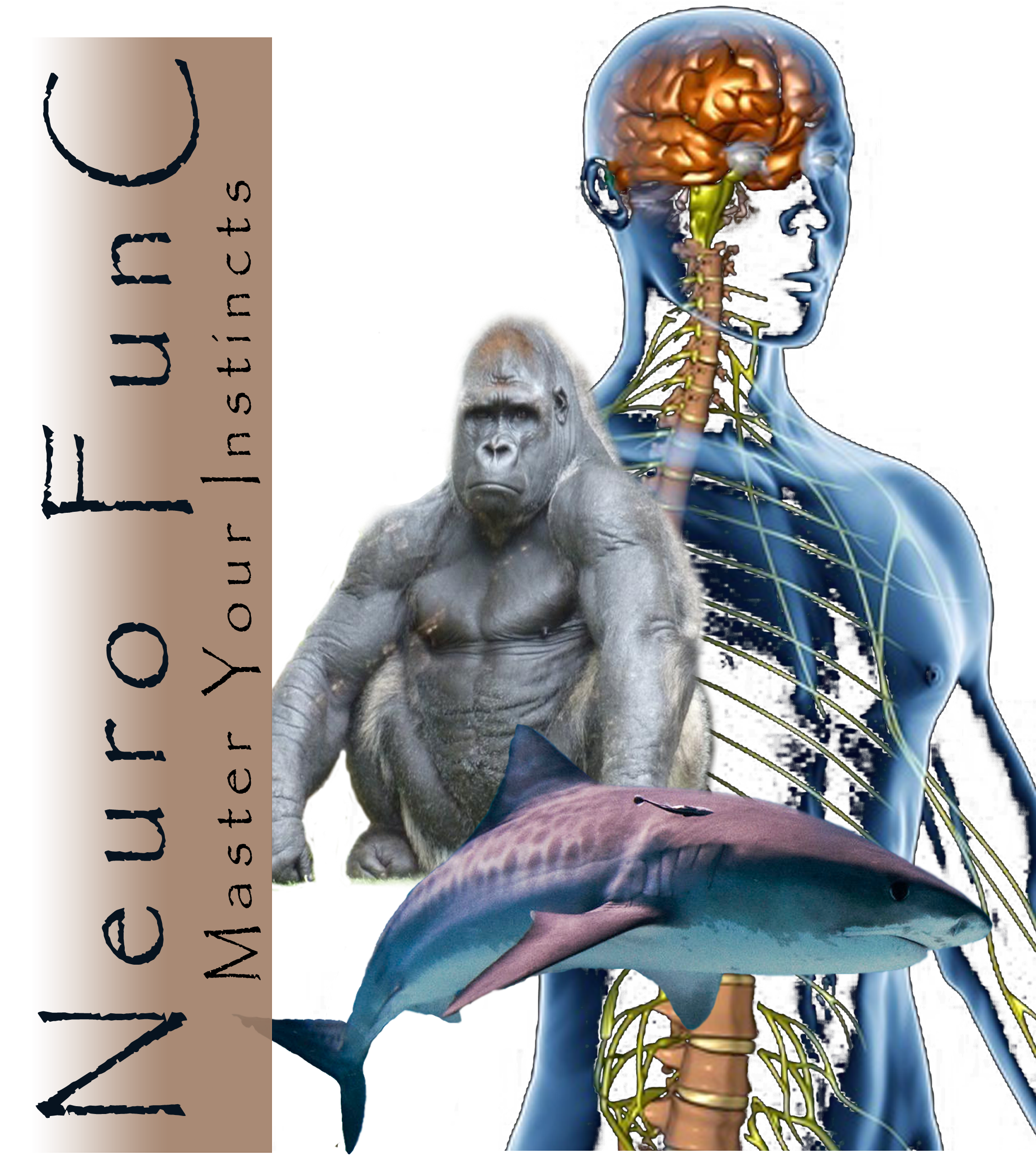 True Primal Training - Neuro FunC